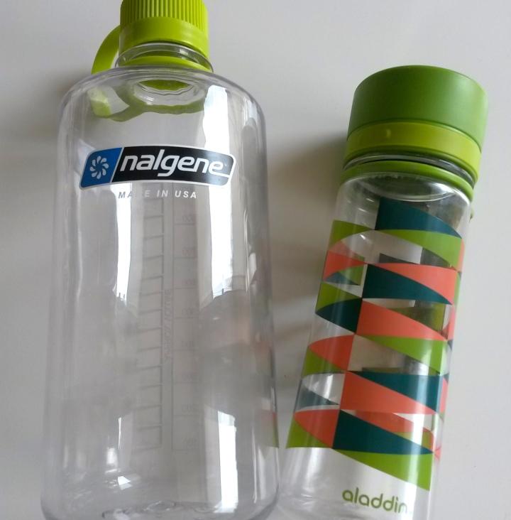 daypack-essential-items-water-bottles-aladdin-nalgene