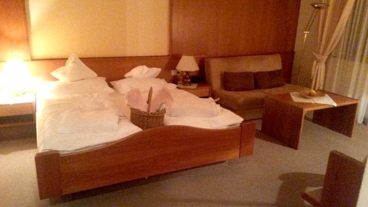 Hotel Schwarzmied room
