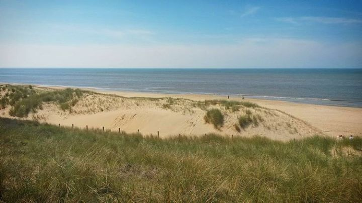 top-10-reasons-to-visit-the-netherlands-sand-dunes