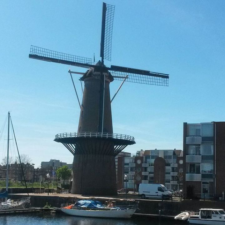 top-10-reasons-to-visit-the-netherlands-windmills